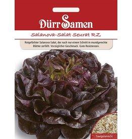 Dürr Samen Salanova-Salat  Seurat RZ