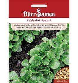 Dürr Samen Feldsalat  Accent
