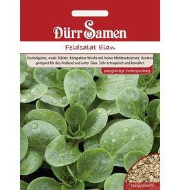 Dürr Samen Feldsalat Elan (Vorteilspackung)