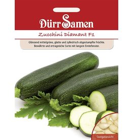 Dürr Samen Zucchini  Diamant F1