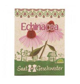 Stadtgärtner Echinacea