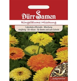 Dürr Samen Ringelblume  Mischung, einjährig, 50–60cm