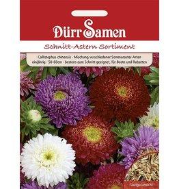 Dürr Samen Schnittastern-Sortiment Mischung verschiedener Sommeraster-Arten, einjährig, 50–60cm