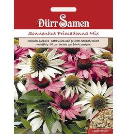 Dürr Samen Echinacea Primadonna Mix, tiefrosa und weiß gefärbte Blüten, mehrjährig, 80cm