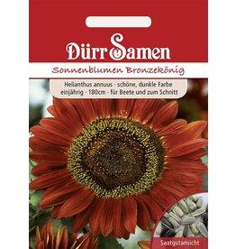 Dürr Samen Sonnenblume  Bronzekönig, schöne dunkle Farbe, einjährig, 180cm