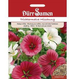 Dürr Samen Trichtermalve Mischung aus weiß, rot und rosa Farbtönen, einjährig, 100cm