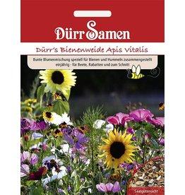 Dürr Samen Blumenmischung Bienen- und Hummelweide, einjährig, 40cm