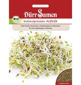 Dürr Samen BIO-Keimsprossen  Alfalfa