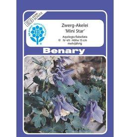 Benary Zwerg-Akelei Mini-Star®, mehrjährig