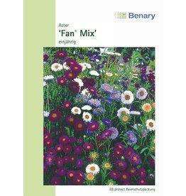 Benary Aster Fan® Mix, einjährig
