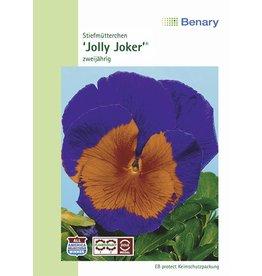 Benary Stiefmütterchen Jolly F2 Joker®, zweijährig