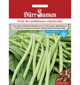 Dürr Samen Filet-Buschbohnen  Castandel