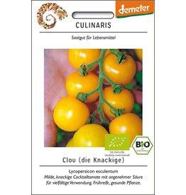Culinaris BIO-Cocktailtomate Clou
