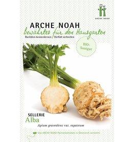 Arche Noah BIO-Knollen-Sellerie Alba