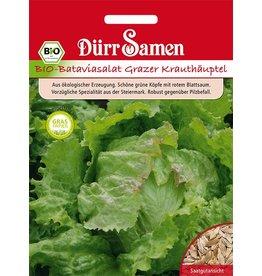 Dürr Samen BIO-Bataviasalat Grazer Krauthäuptel