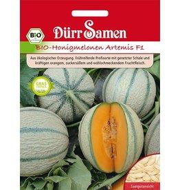 Dürr Samen BIO-Honigmelonen Artemis F1