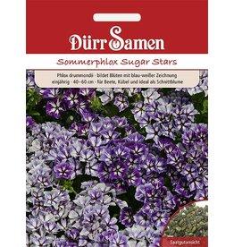 Dürr Samen Sommerphlox 'Sugar Stars', einjährig, 40-60cm