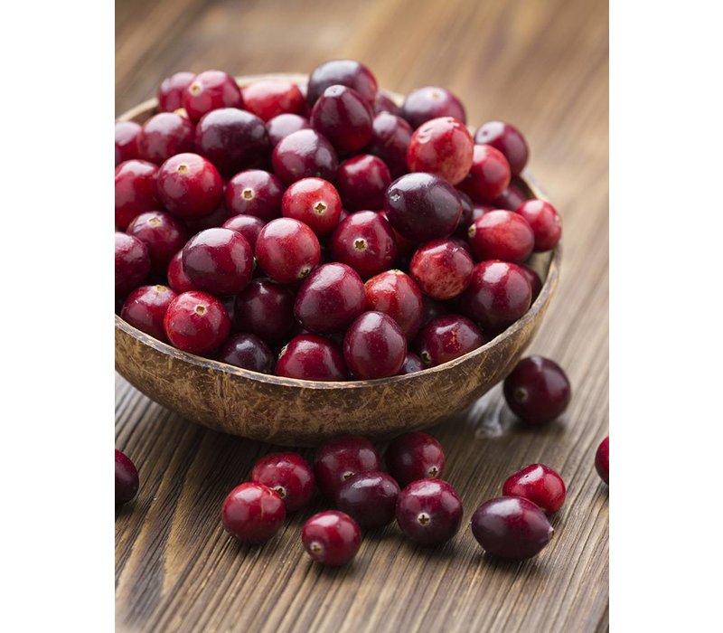 Handseife Patschuli & Cranberry (250 ml)