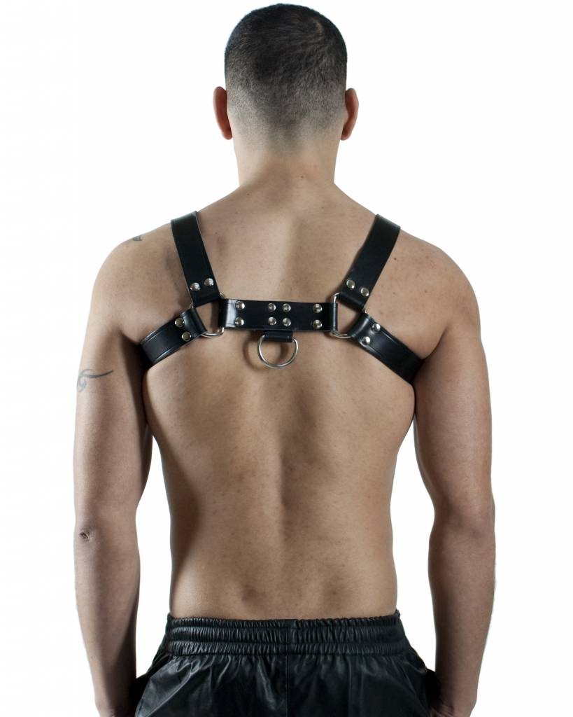 RoB H-front Harness