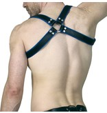 RoB Shoulder Harness black with blue Piping
