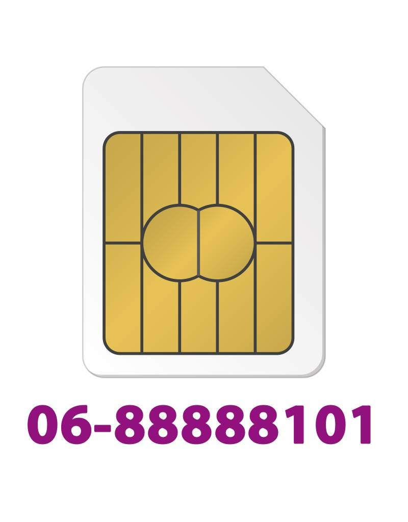 Sim Only Gold 0688888101