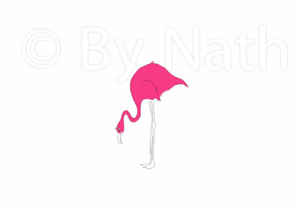 ART PRINT FLAMINGO (framed)