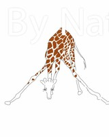 Art Print giraffe