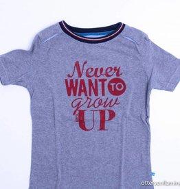 Borz Grijze T - Shirt, Borz - 110/116