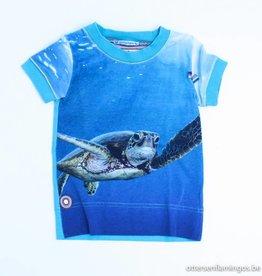 4 Funky Flavours T - Shirt schildpad, 4FF - 86/92