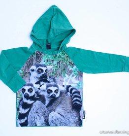 Wild Groene hoodie, Wild - 98/104