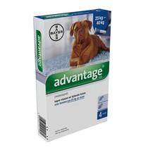 Bayer Advantage 400 voor honden van 25kg tot 40kg - tegen vlooien en luizen