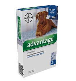 Bayer Advantage Hond 400 25kg tot 40kg 4 pipetten