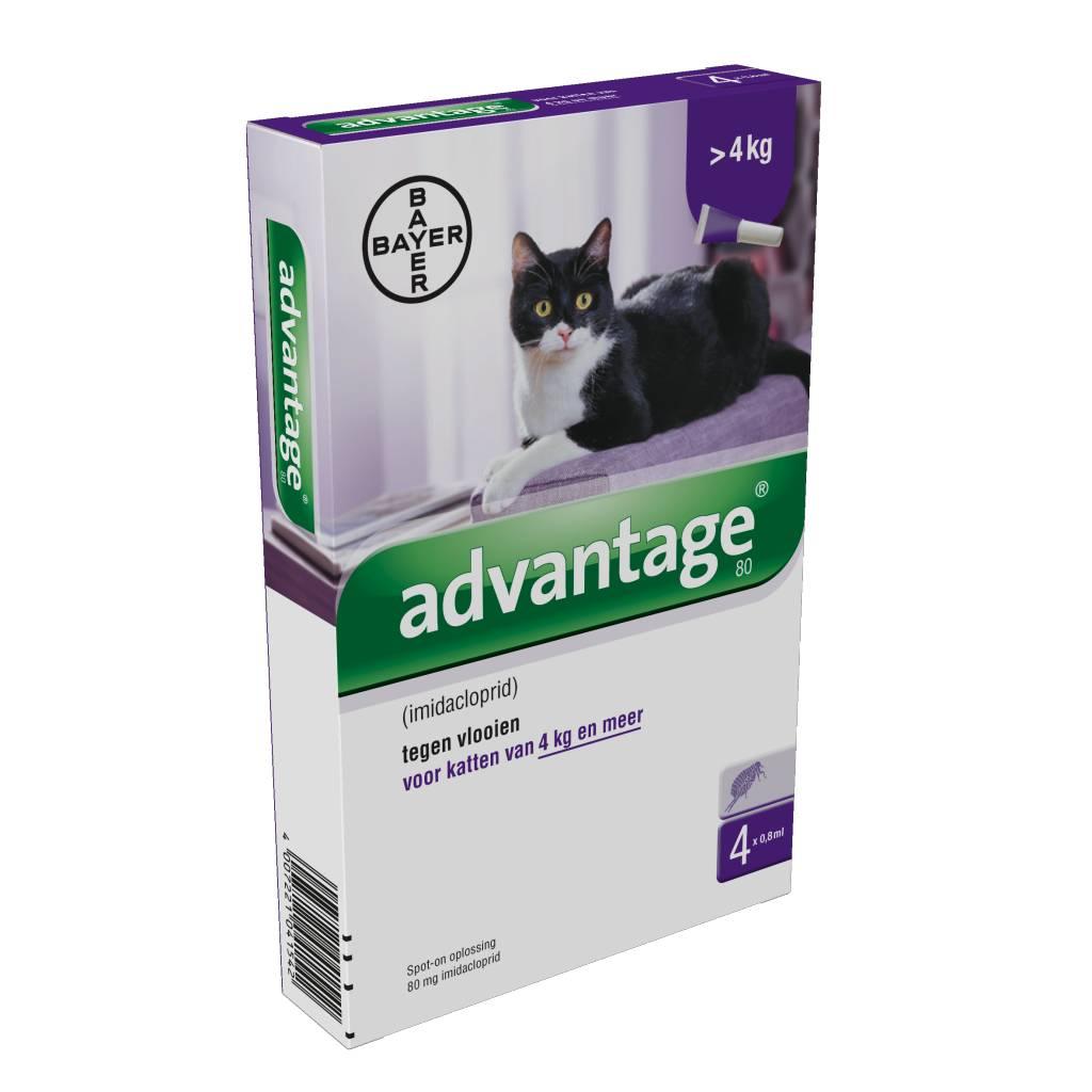 Bayer Advantage 80 voor katten vanaf 4kg - tegen vlooien - 4 pipetten