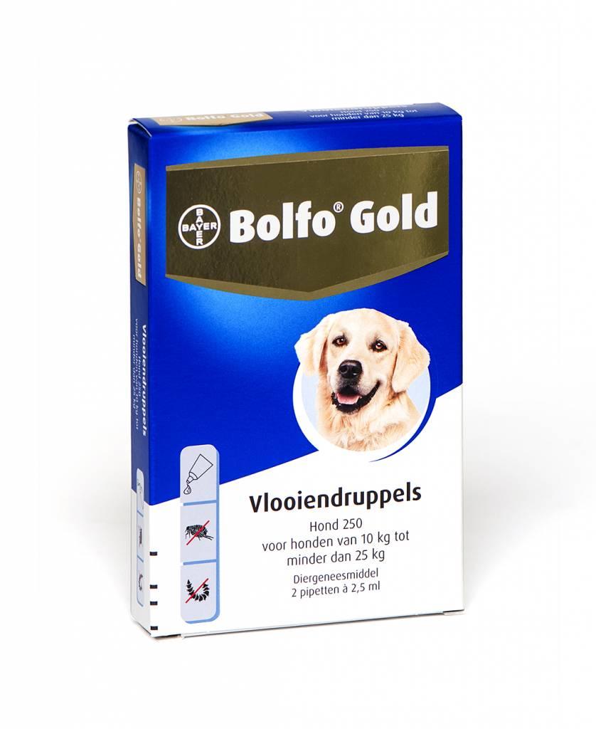 Bayer Bolfo Gold 250 voor honden van 10kg tot 25kg - tegen vlooien - 2 pipetten