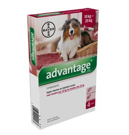 Bayer Advantage Hond 250 10kg tot 25kg 4 pipetten