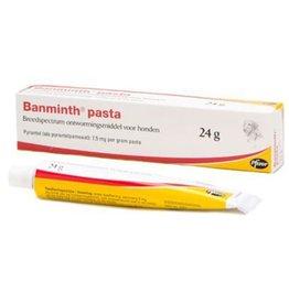 Zoetis Banminth Pasta Hond
