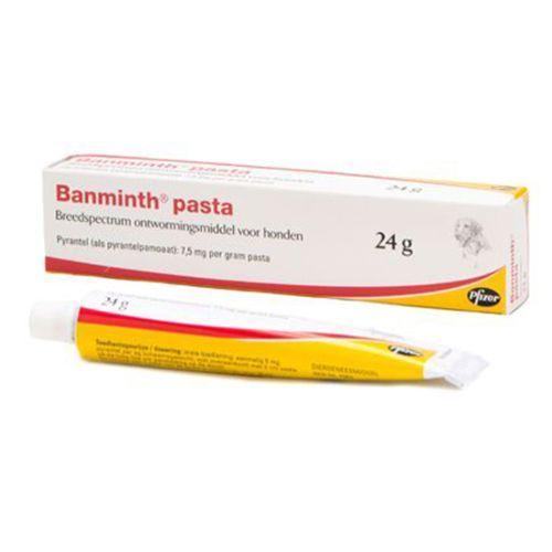 Zoetis Banminth Pasta Hond - tube 24gr - smakelijke middel tegen spoelwormen bij de hond