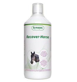 Synopet Recover Horse