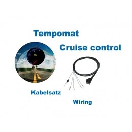 Cruise Control - Harness - Audi A3 8L - Gasoline