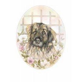 Creatief Art Pakket 6x SWR9-17   honden