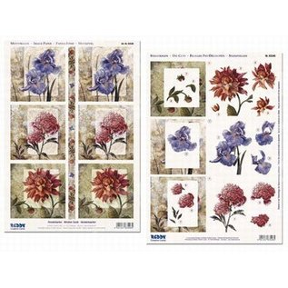 Reddy cards Vensterkaarten bloemen
