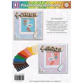 Pixel Hobby Pixelhobby Geboorte