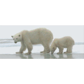 Pixel Hobby Pixelhobby ijsberen - 8 platen