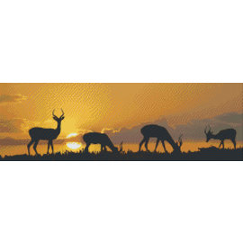 Pixel Hobby PixelHobby Sonnenuntergang Afrika - 10 Blatt