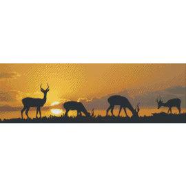 Pixel Hobby Pixelhobby zonsondergang Afrika - 10 platen