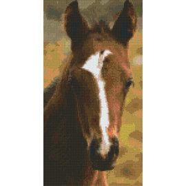 Pixel Hobby Pixelhobby paardenhoofd - 6 platen