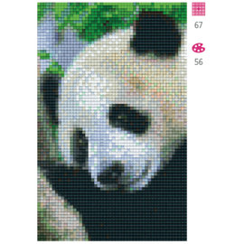 Pixel Hobby Pandabeer - 2 plaques