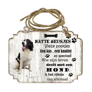 Hondenbordje: Mastin De los Prineos( Pirneese Mastiff)
