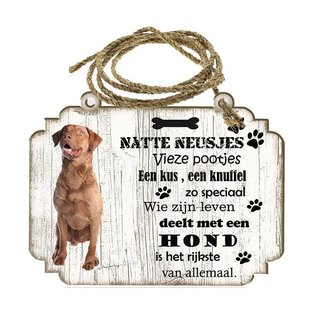 Hondenbordje: Chesapeake Bay Retriever