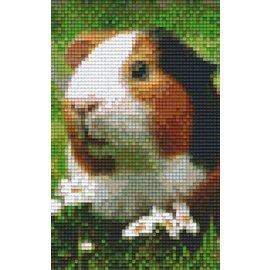 Pixel Hobby PixelHobby zweiten Grundplatten Guinea